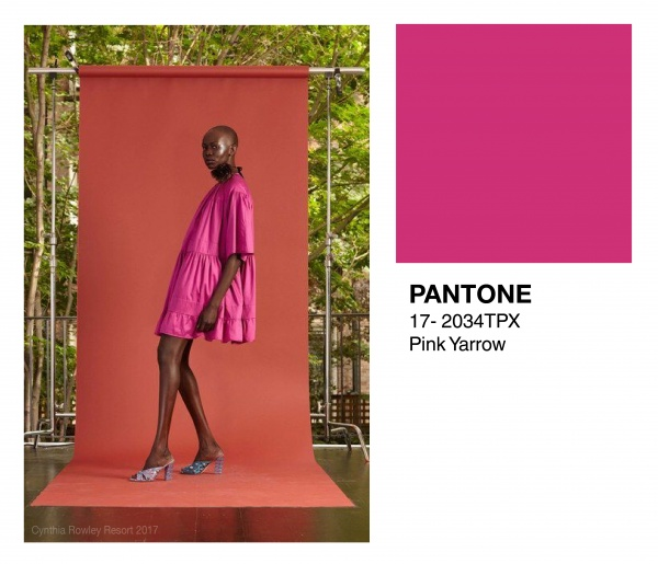 pink-yarrow-01-e1475097308409